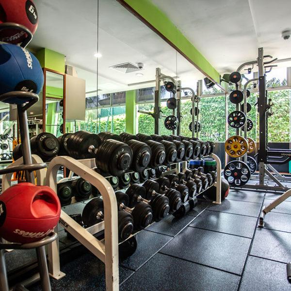 Gymnasium-3